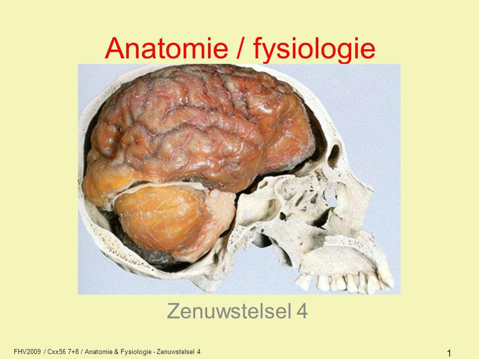 Anatomie / fysiologie Zenuwstelsel 4 AFI1