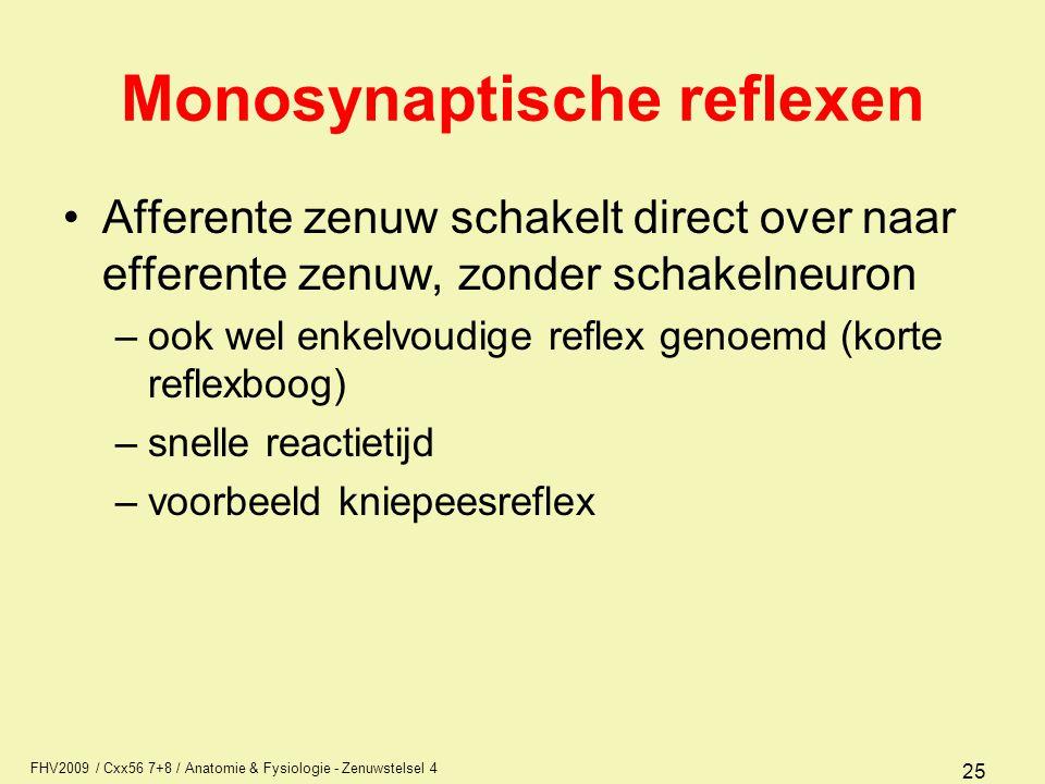 Monosynaptische reflexen