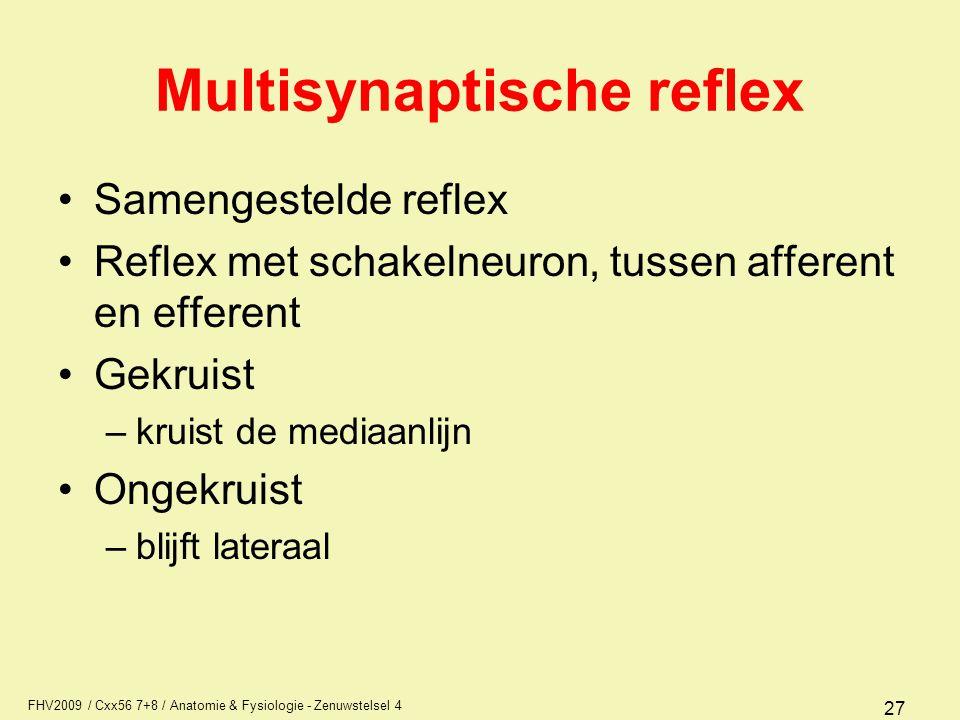 Multisynaptische reflex