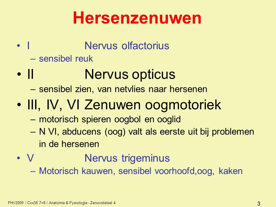 Hersenzenuwen II Nervus opticus III, IV, VI Zenuwen oogmotoriek