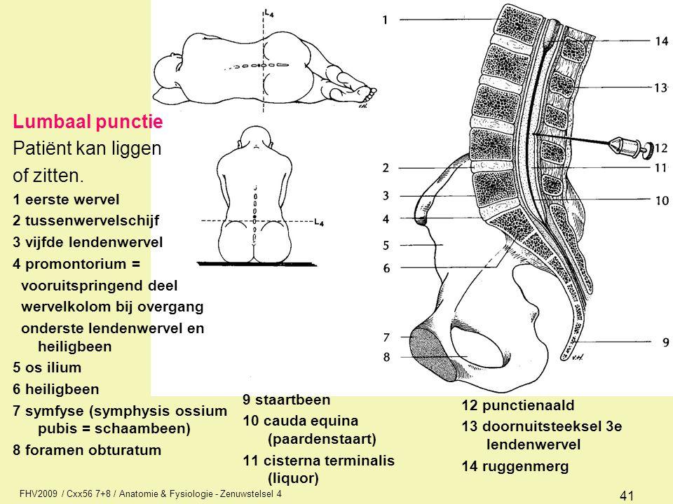 Lumbaal punctie Patiënt kan liggen of zitten. 1 eerste wervel