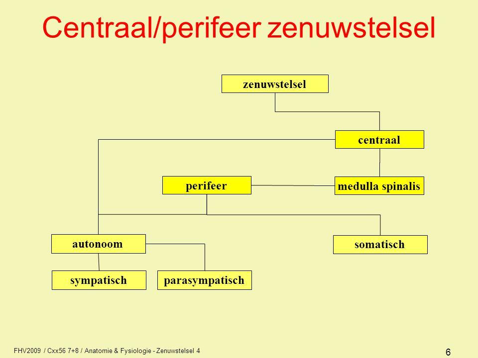 Centraal/perifeer zenuwstelsel