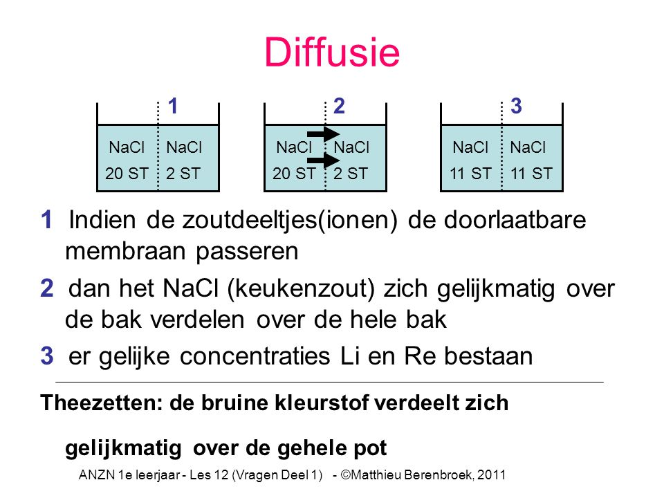 ANZN 1e leerjaar - Les 12 (Vragen Deel 1) - ©Matthieu Berenbroek, 2011