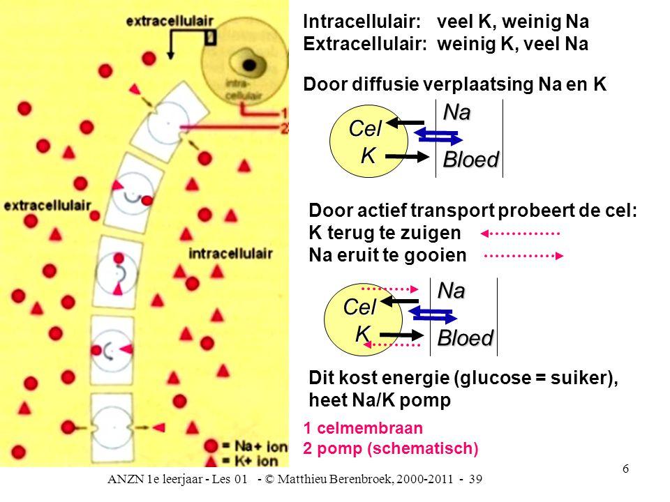 ANZN 1e leerjaar - Les 01 - © Matthieu Berenbroek, 2000-2011 - 39