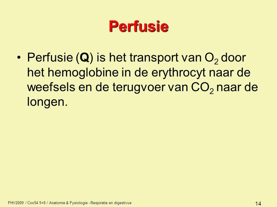 Perfusie Perfusie (Q) is het transport van O2 door het hemoglobine in de erythrocyt naar de weefsels en de terugvoer van CO2 naar de longen.