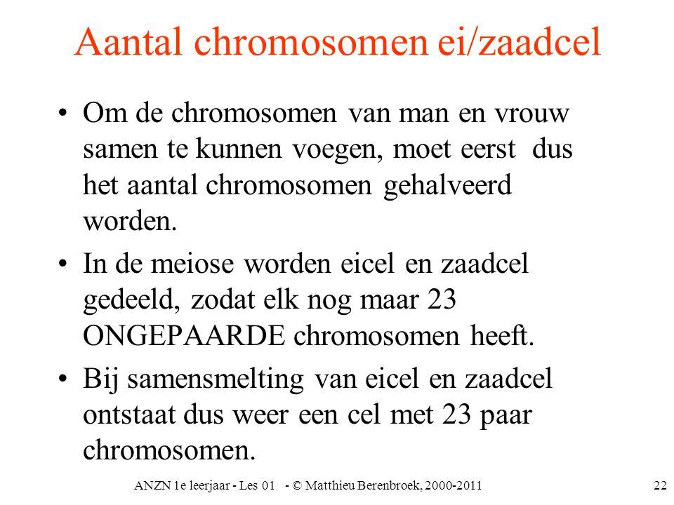 Aantal chromosomen ei/zaadcel