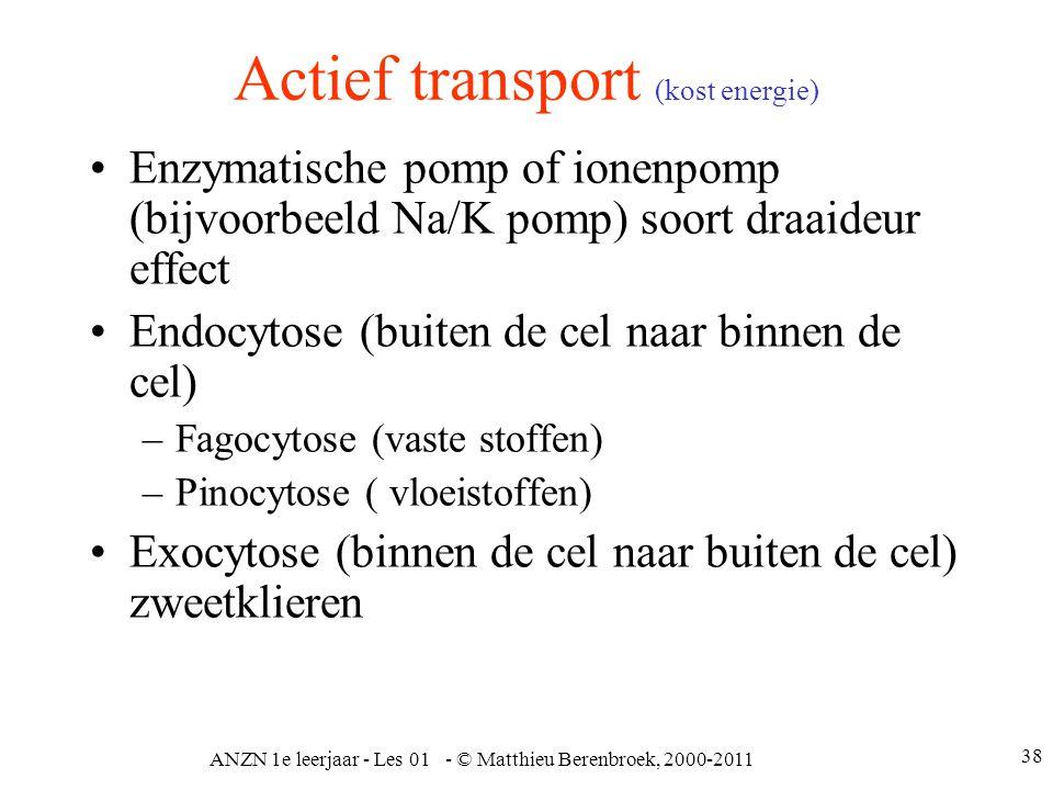 Actief transport (kost energie)