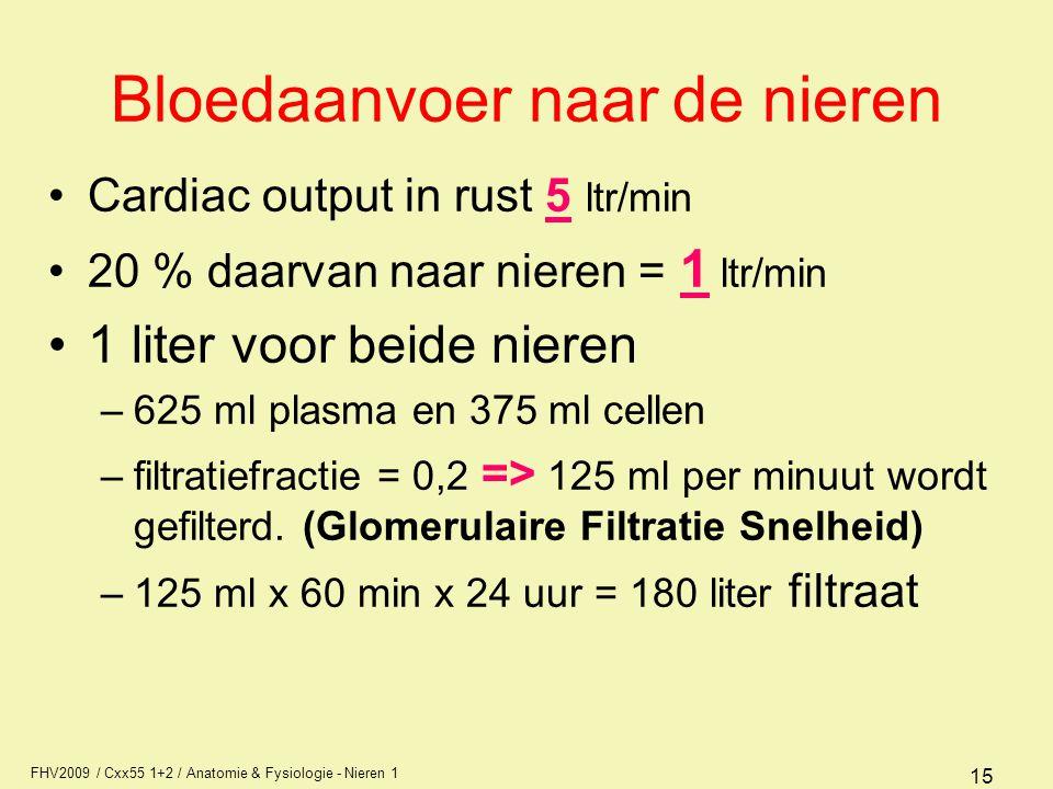 Bloedaanvoer naar de nieren
