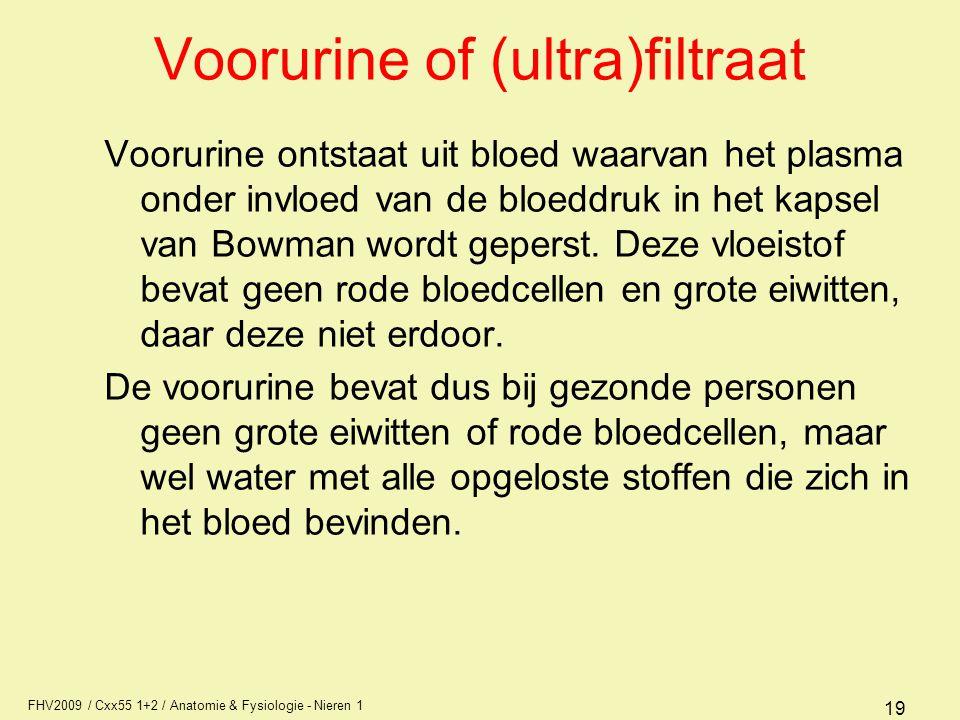 Voorurine of (ultra)filtraat