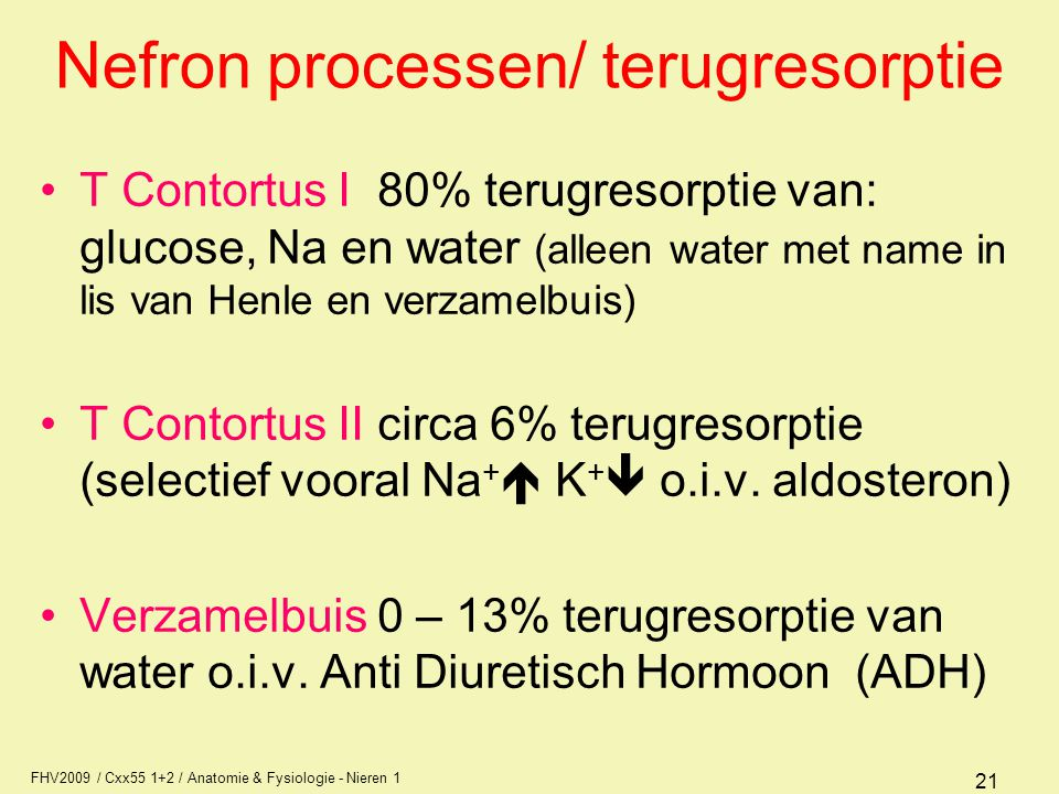 Nefron processen/ terugresorptie