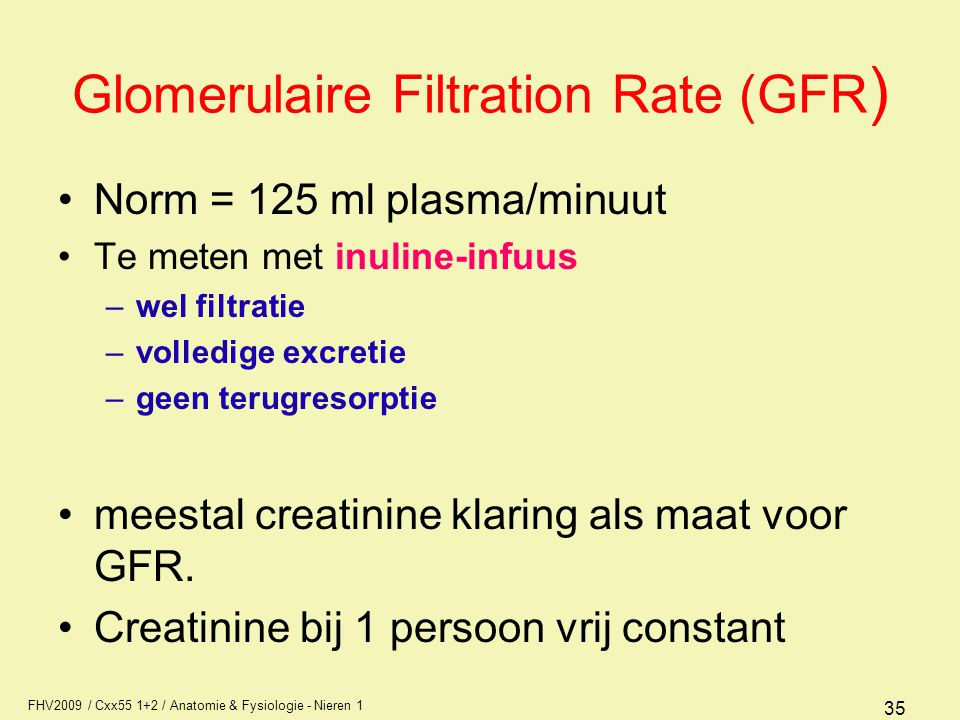 Glomerulaire Filtration Rate (GFR)