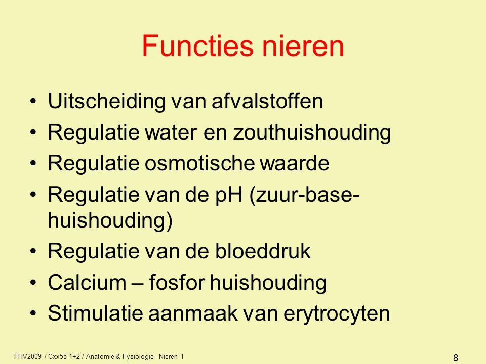 Functies nieren Uitscheiding van afvalstoffen