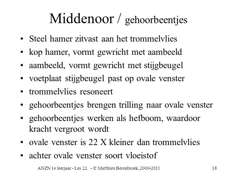 Middenoor / gehoorbeentjes