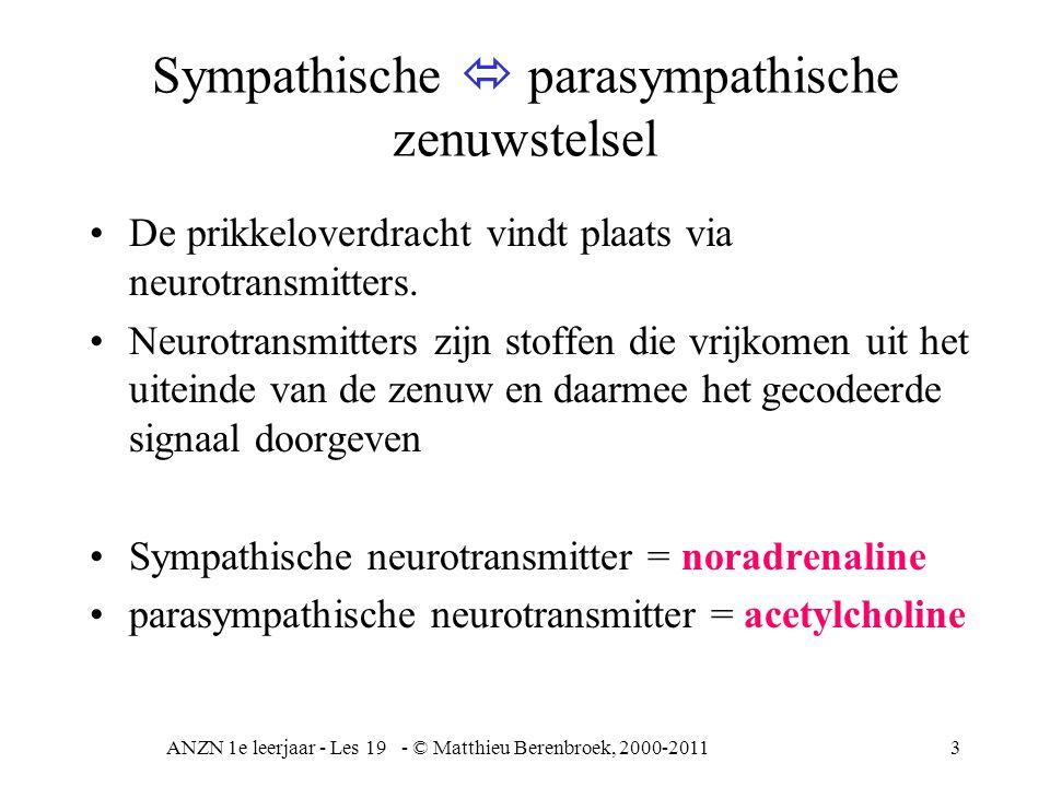 Sympathische  parasympathische zenuwstelsel