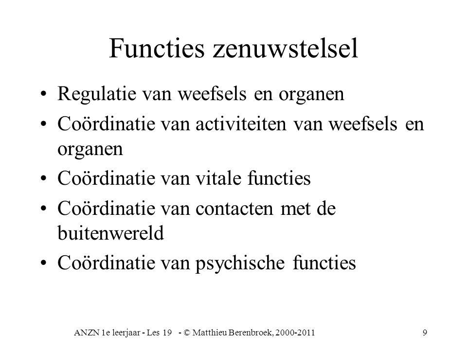Functies zenuwstelsel