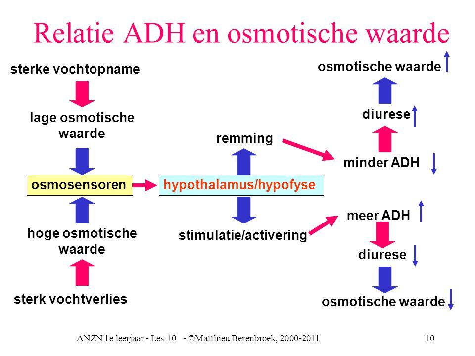 Relatie ADH en osmotische waarde