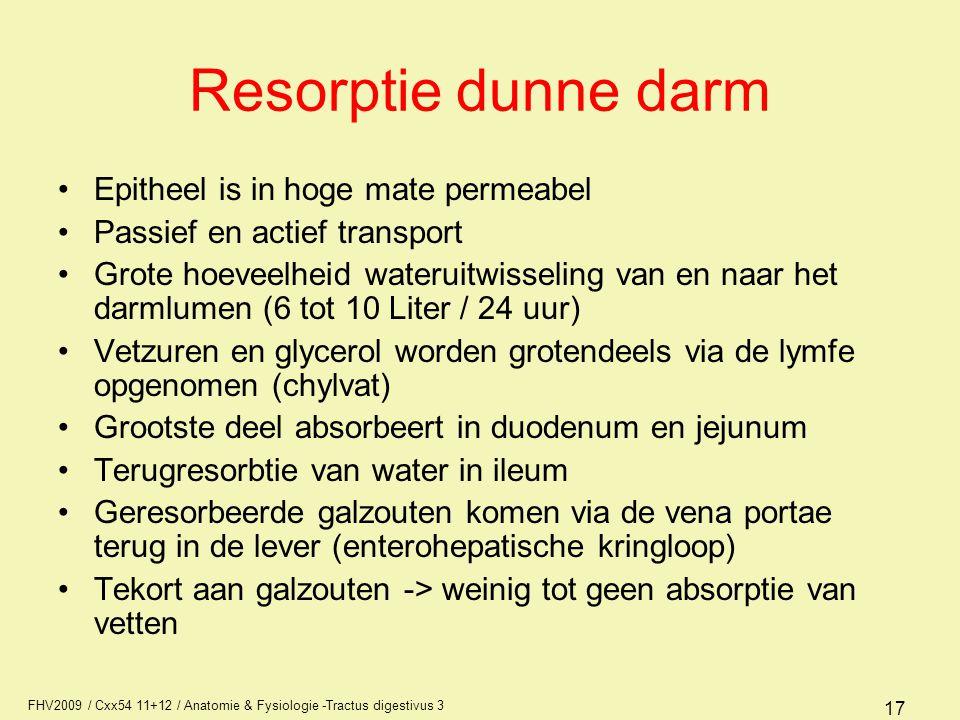 Resorptie dunne darm Epitheel is in hoge mate permeabel