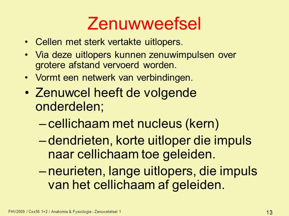 Zenuwweefsel Zenuwcel heeft de volgende onderdelen;