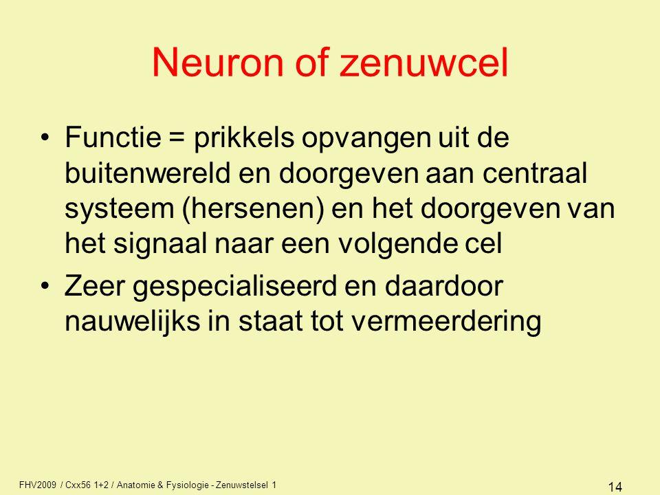 Neuron of zenuwcel