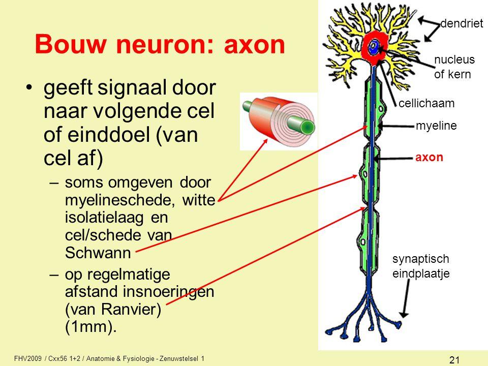 dendriet nucleus. of kern. myeline. axon. synaptisch. eindplaatje. cellichaam. Bouw neuron: axon.