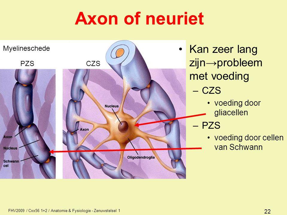 Axon of neuriet Kan zeer lang zijn→probleem met voeding CZS PZS