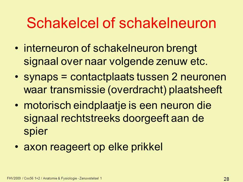 Schakelcel of schakelneuron