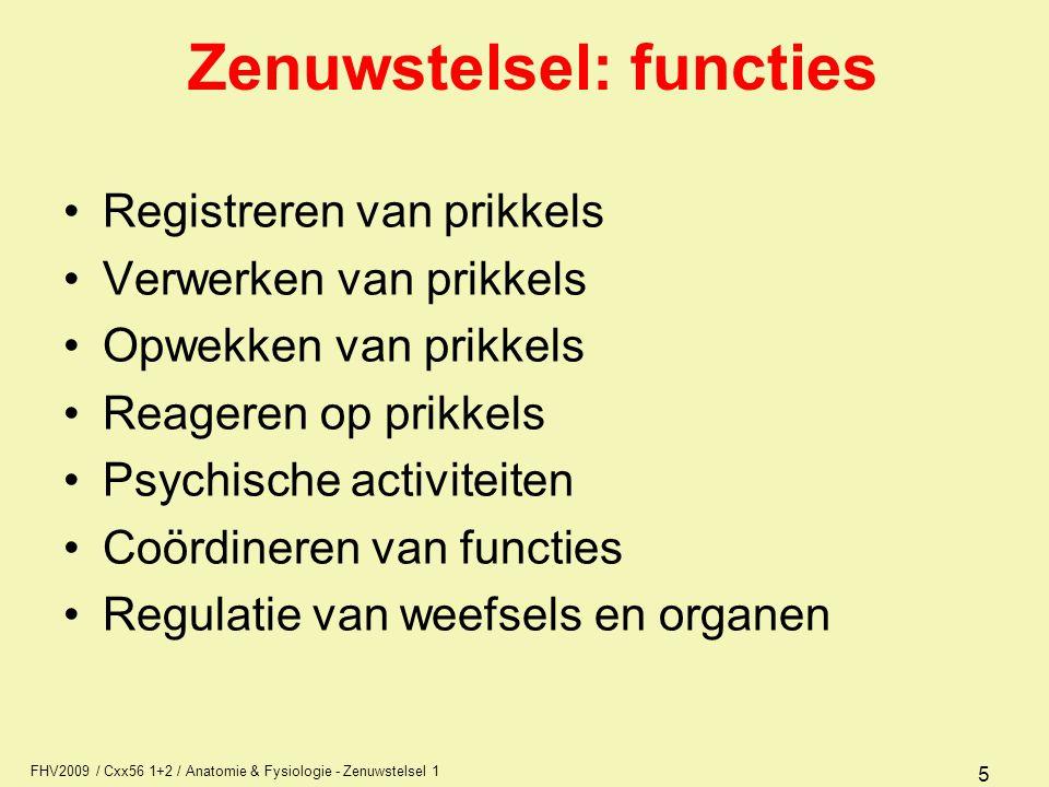 Zenuwstelsel: functies