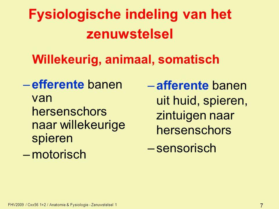 Fysiologische indeling van het zenuwstelsel