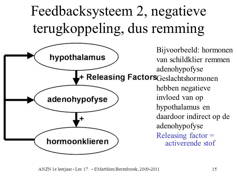 Feedbacksysteem 2, negatieve terugkoppeling, dus remming