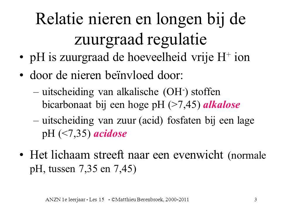 Relatie nieren en longen bij de zuurgraad regulatie