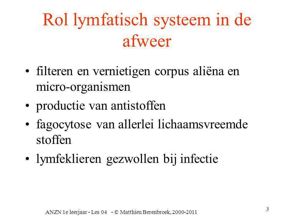 Rol lymfatisch systeem in de afweer
