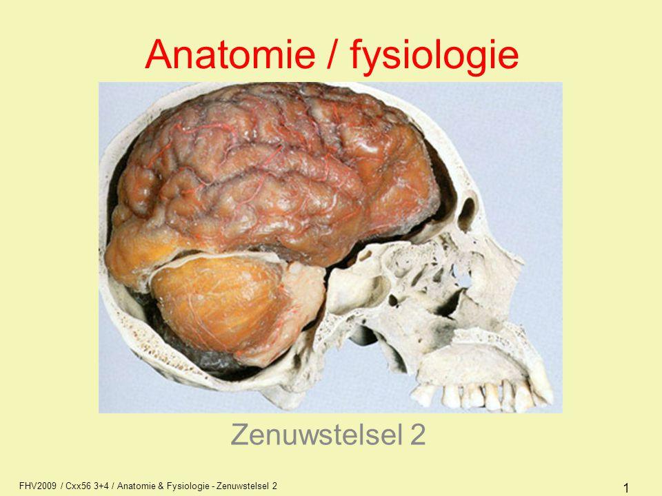 Anatomie / fysiologie Zenuwstelsel 2 AFI1