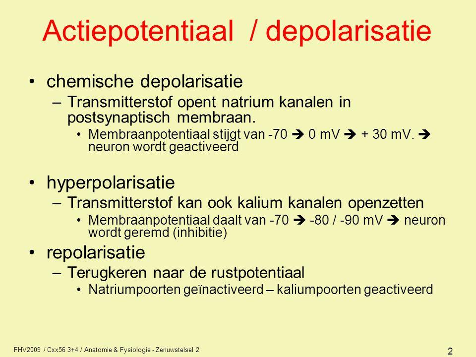 Actiepotentiaal / depolarisatie