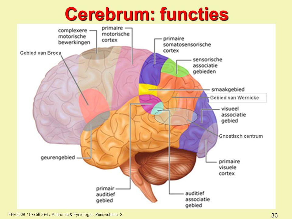 Cerebrum: functies FHV2009 / Cxx56 3+4 / Anatomie & Fysiologie - Zenuwstelsel 2
