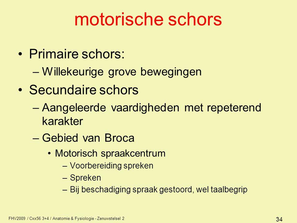 motorische schors Primaire schors: Secundaire schors