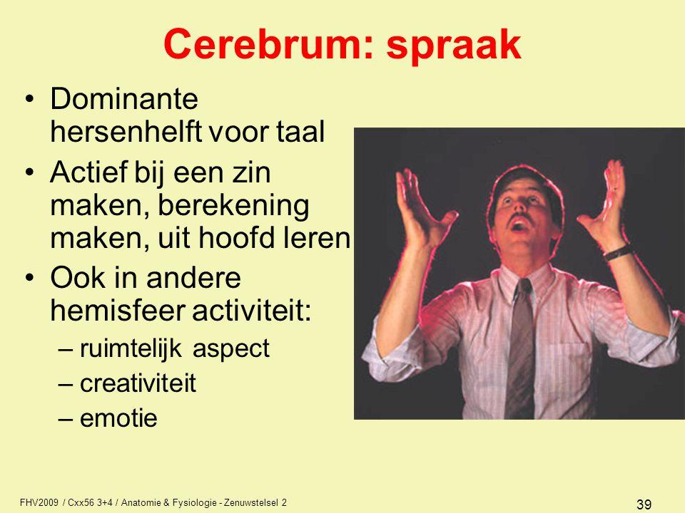 Cerebrum: spraak Dominante hersenhelft voor taal