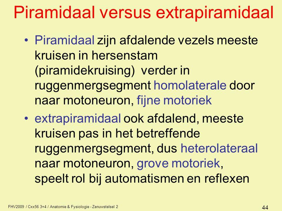 Piramidaal versus extrapiramidaal