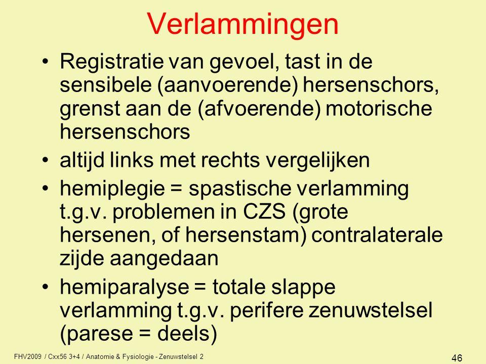 Verlammingen Registratie van gevoel, tast in de sensibele (aanvoerende) hersenschors, grenst aan de (afvoerende) motorische hersenschors.