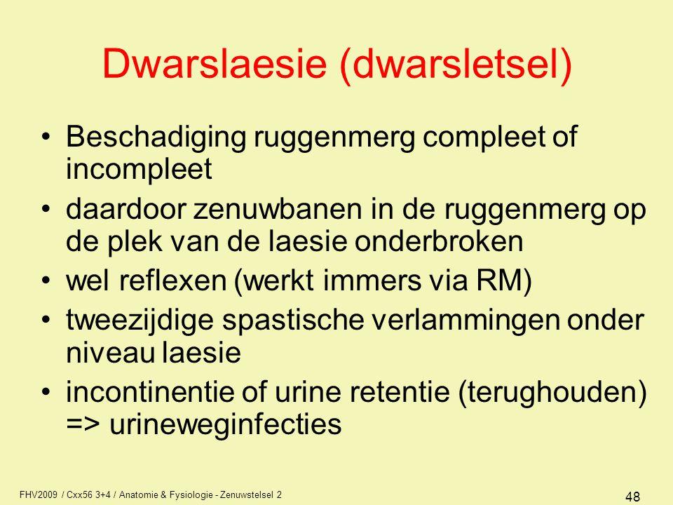 Dwarslaesie (dwarsletsel)