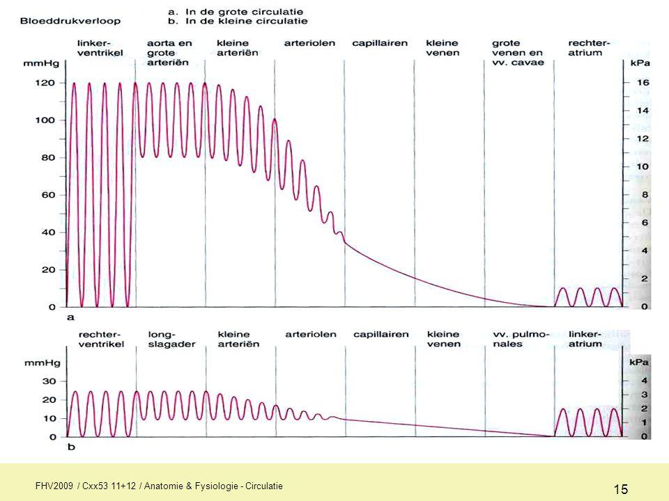 FHV2009 / Cxx53 11+12 / Anatomie & Fysiologie - Circulatie