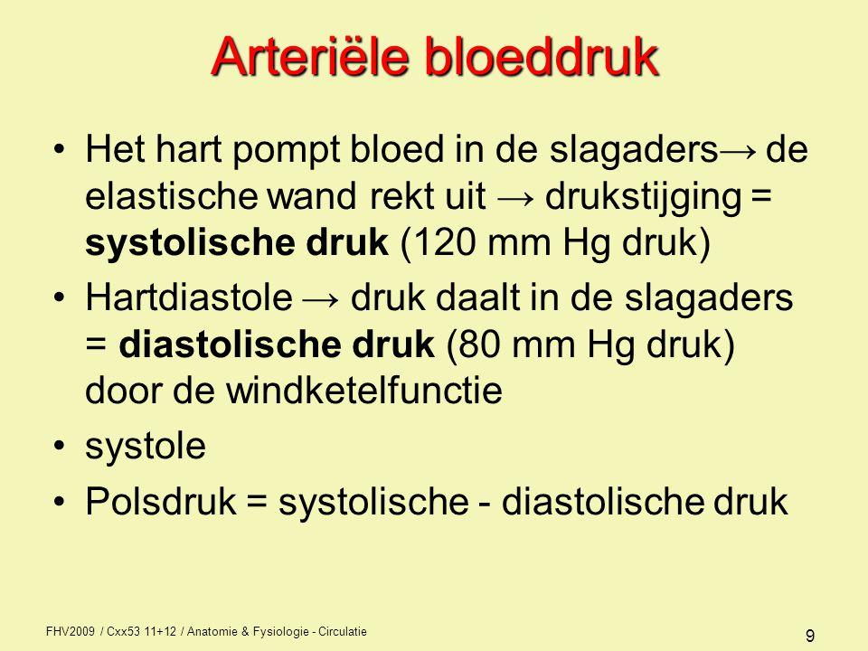 Arteriële bloeddruk Het hart pompt bloed in de slagaders→ de elastische wand rekt uit → drukstijging = systolische druk (120 mm Hg druk)