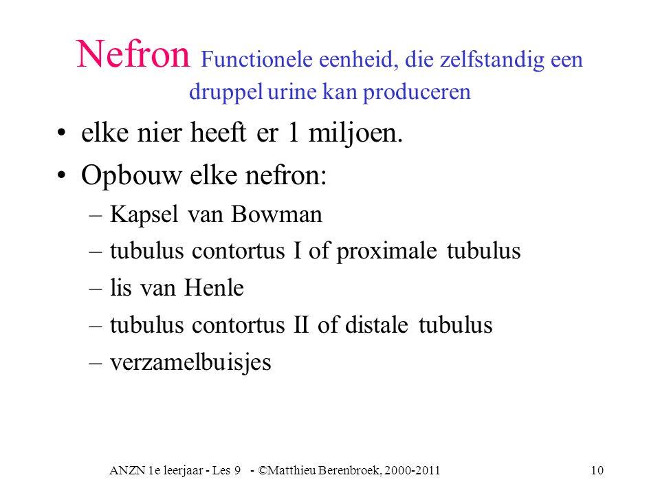 ANZN 1e leerjaar - Les 9 - ©Matthieu Berenbroek, 2000-2011