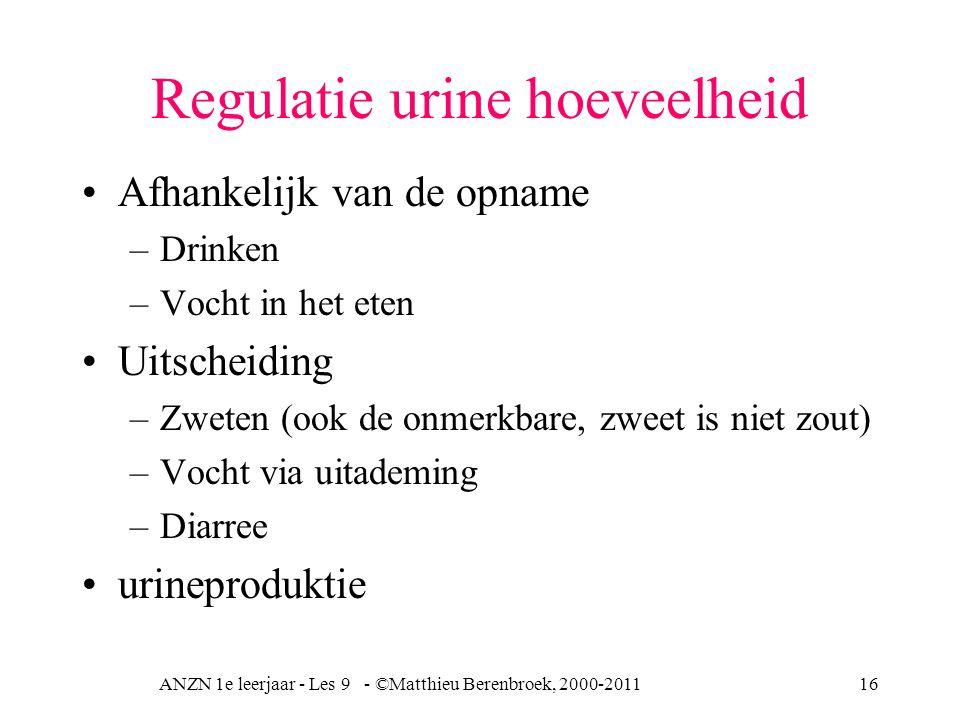 Regulatie urine hoeveelheid