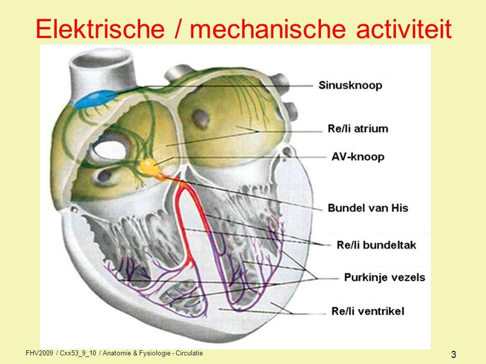 Elektrische / mechanische activiteit