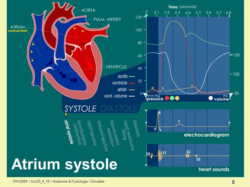 Atrium systole FHV2009 / Cxx53_9_10 / Anatomie & Fysiologie - Circulatie 8