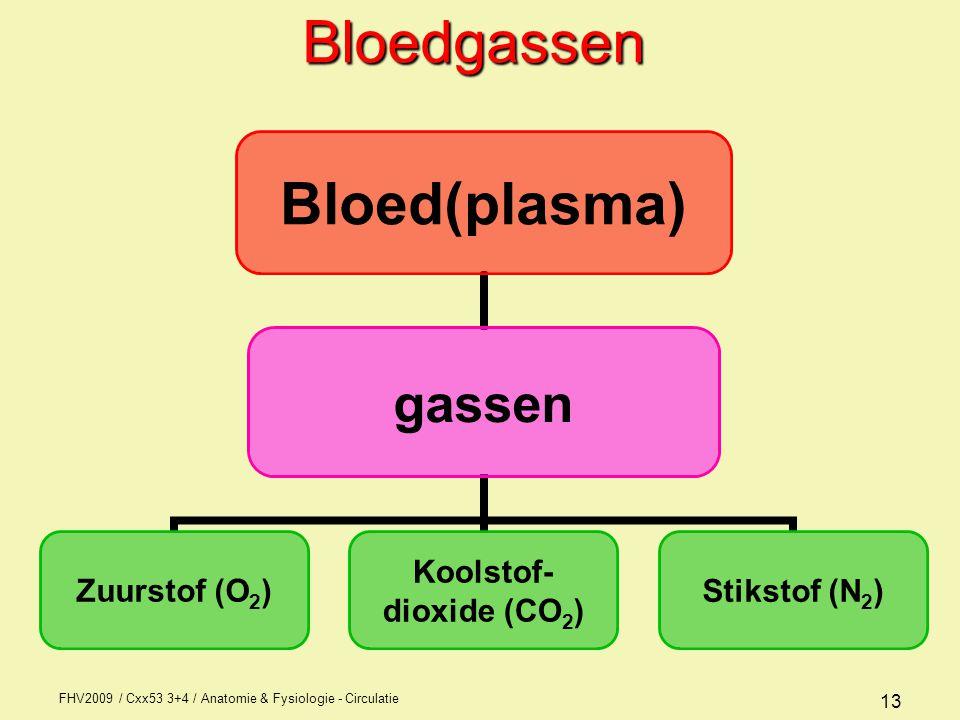Bloedgassen FHV2009 / Cxx53 3+4 / Anatomie & Fysiologie - Circulatie