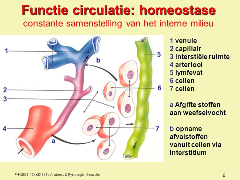 Functie circulatie: homeostase constante samenstelling van het interne milieu