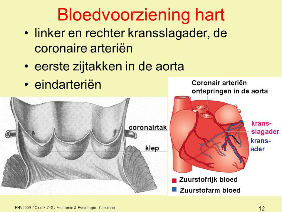 Bloedvoorziening hart