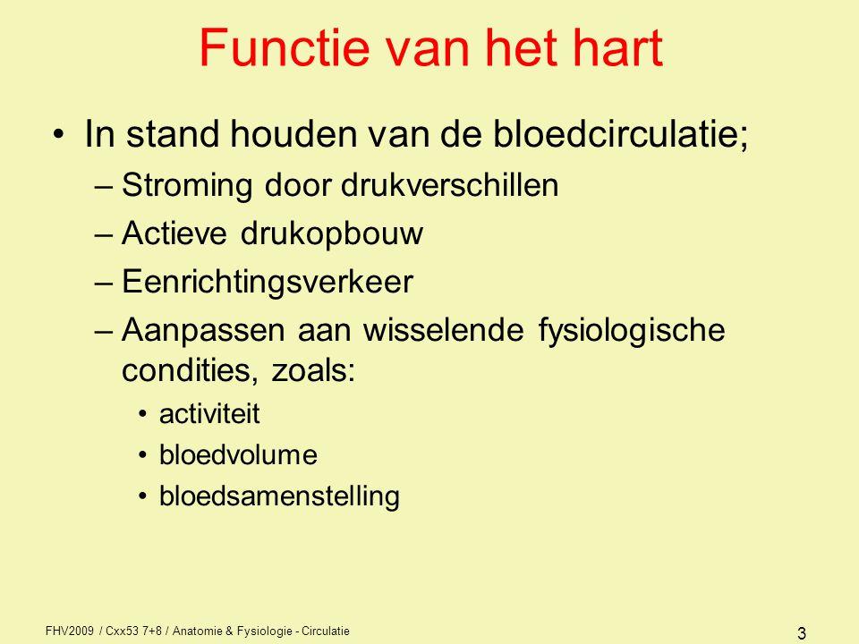Functie van het hart In stand houden van de bloedcirculatie;