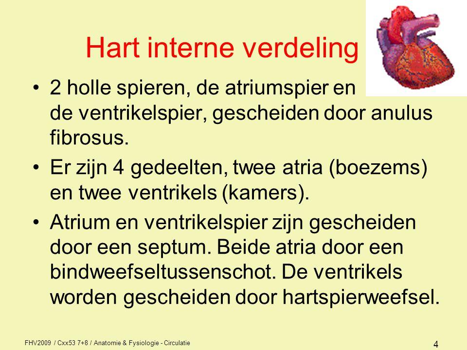 Hart interne verdeling